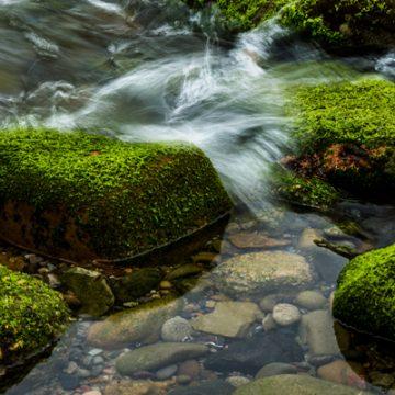 Still Waters | thecozyapron.com