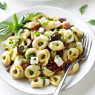 Italian Pasta Salad with Red Wine Vinaigrette