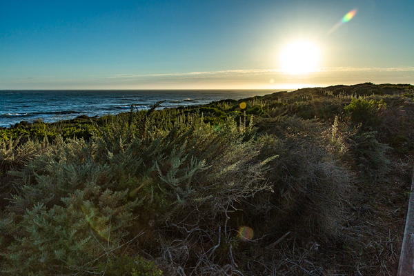 Sunset, Moonstone Beach, Cambria, California  | thecozyapron.com