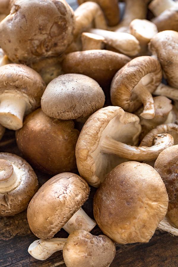 Mushroom Stroganoff Ingredients| thecozyapron.com